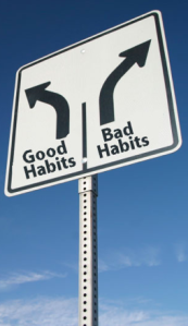 Goals drive habit formation
