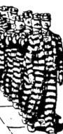 Prison Lockstep
